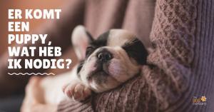 Er komt een puppy, wat heb ik nodig?