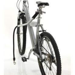 Cycleash