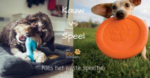 Kauw-vs-Speel-Kies-het-juiste-speeltje