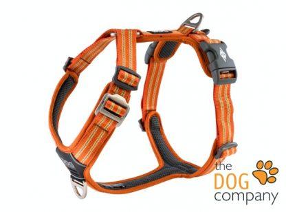 Comfort Walk Air tuig - Orange Sun