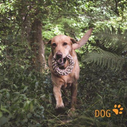 Hemp Ring - Beco Pets