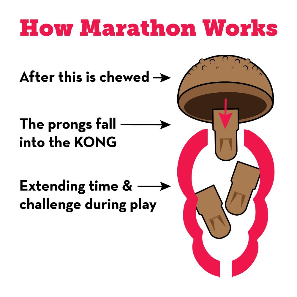KONG Marathon - werking