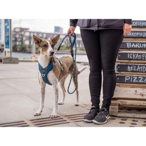Comfort Walk Pro tuig - Dog Copenhagen - CWP-Harness-1Outdoor-P1022016